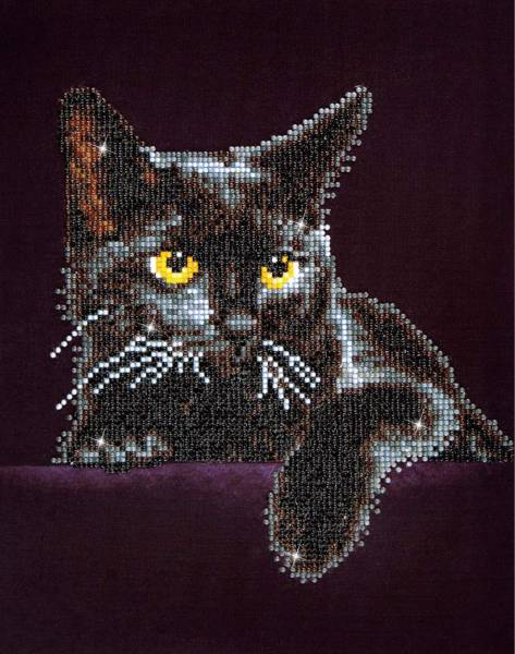 Midnight Cat With Frame Diamond Dotz: 28x36 cm (DD B5.001)