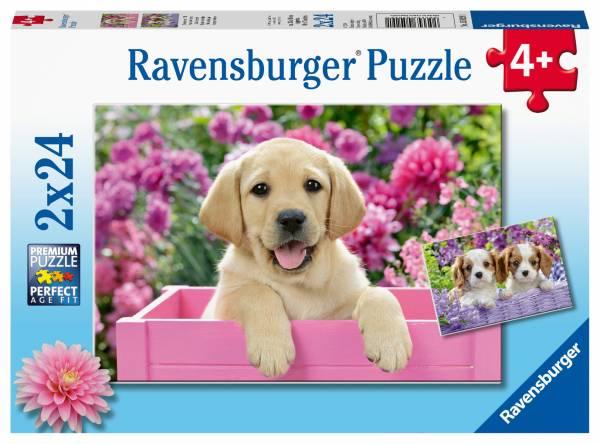Puzzel Dierenfoto: 2x24 stukjes (50291)
