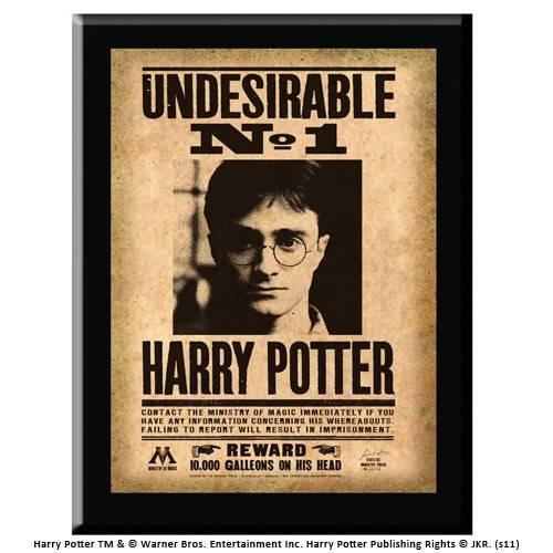 "Muurplaat ""Undesirable N1"" Harry Potter"